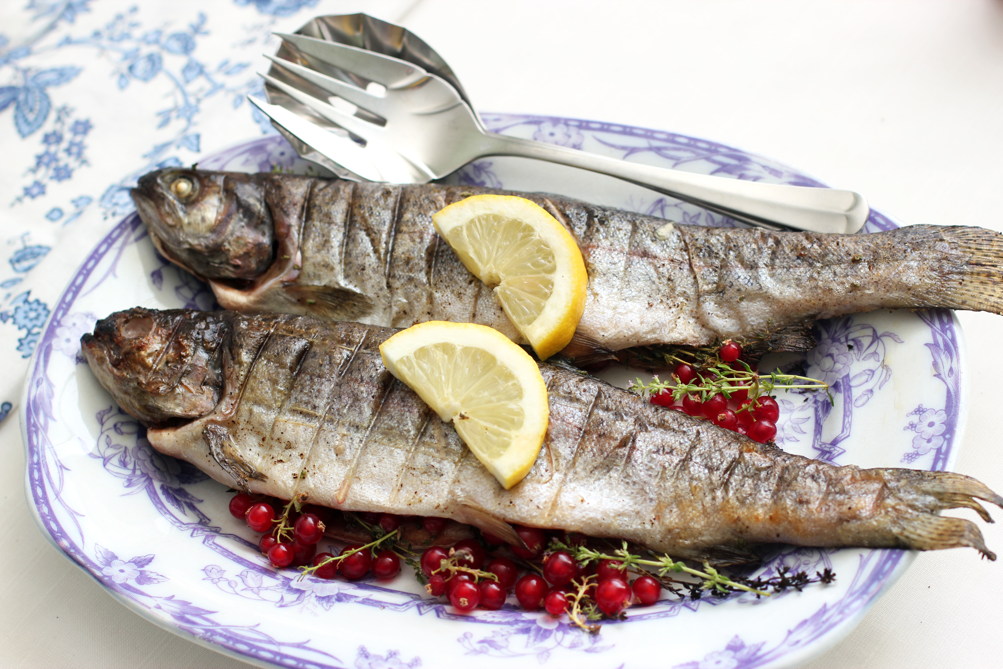 Img B Grilled Whole Trout
